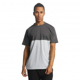 Dangerous DNGRS / T-Shirt OSA in grey