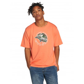 Dangerous DNGRS / T-Shirt Born2Chill in orange